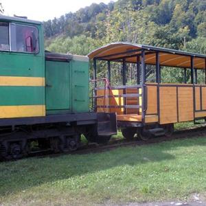 Карпатський трамвай